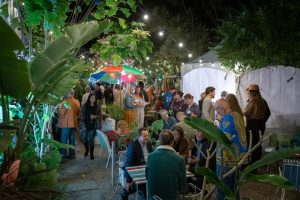 Thanks to North Coast Events for shining a light on the exotic garden of the Brunswick Picture House.