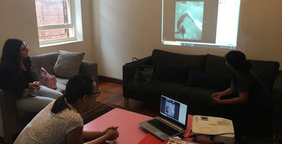 Gunawirra webinar with preschool teachers